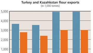 Top 5 Export Countries of Wheat Flour