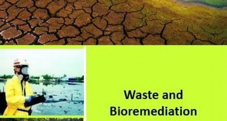 Waste and Bioremediation
