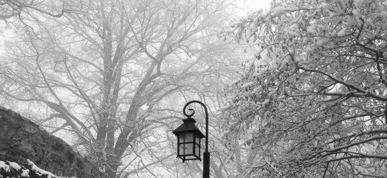 Мартвили зима
