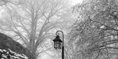 მარტვილი ზამთარში