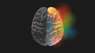 NLPt  ნეირო-ლინგვისტური პროგრამირებით ფსიქოთერაპია Neuro-Linguistic Psychotherapy