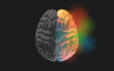 NLPt  ნეირო-ლინგვისტური პროგრამირებით ფსიქოთერაპია