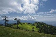 ბორჯომ-ხარაგაულის ეროვნული პარკი