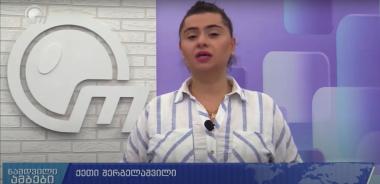 მედია-კავშირი ობიექტივის ჟურნალისტის ქეთი შერგელაშვილის წინააღმდეგ ქარტიას მომართეს