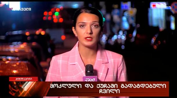 TV პირველის ჟურნალისტის ანა ახალაიას  წინააღმდეგ ქარტიას მიმართეს