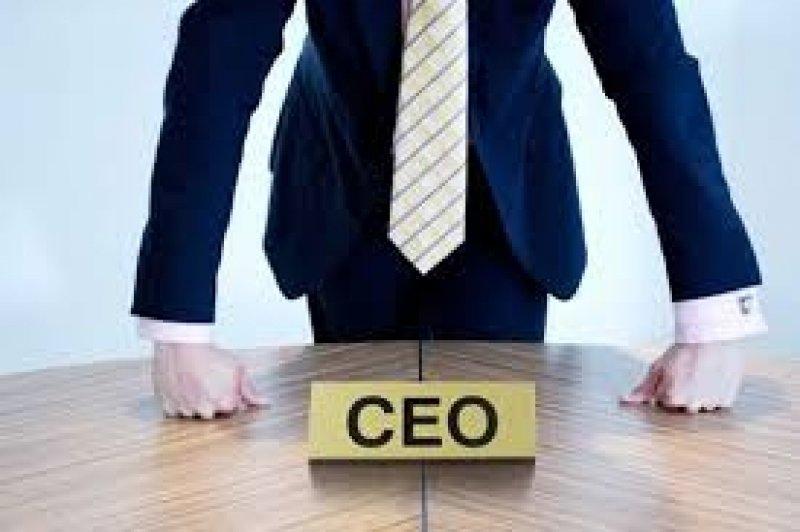 """""""ტოპმენეჯმენტი ბიზნესის მართვა _ CEO პროგრამა"""""""