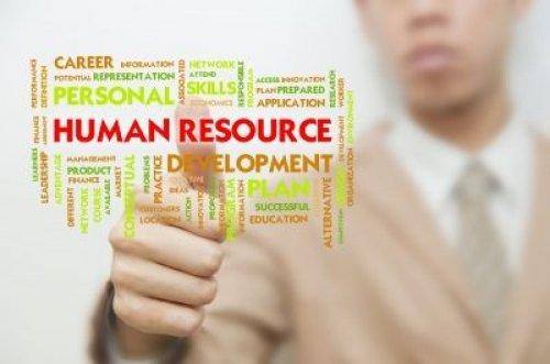 თანამშრომელთა განვითარება: