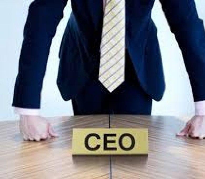 ტოპმენეჯერის პიროვნული განვითარება _CEO MINDSET