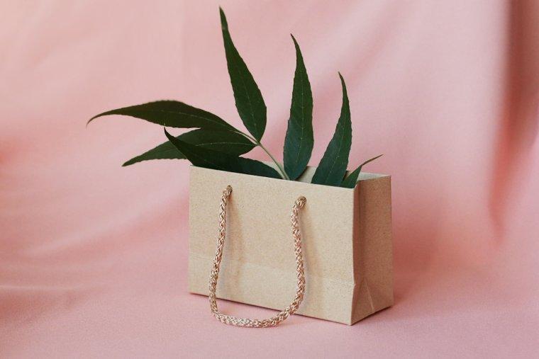 ქაღალდის ჩანთა