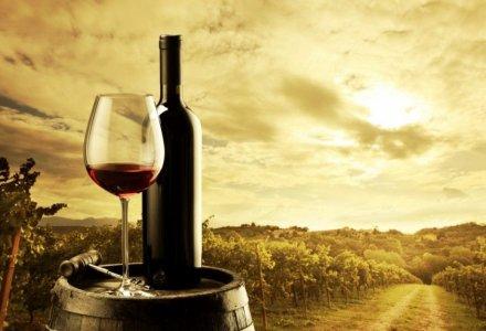 wine history