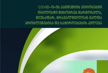 A study has been created about the problems and Needs of the Single, Homeless Mothers of Many Children Living in Tbilisi During the COVID-19 Pandemic November, 2020 Tbilisi, Georgia COVID-19.