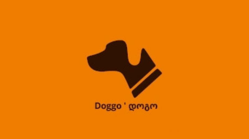 """Doggo ' დოგო  """"ელექსირი""""-ის  დილერი გახდა"""